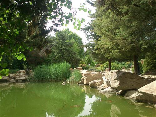 1205188780 LargeThum باغ ارم شیراز
