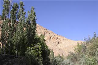 فائزه, طبیعت روستا رامه