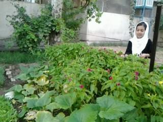 فاطمه رنجبر, باغ پر گل