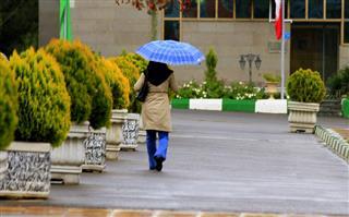 مجید اصغری, باران