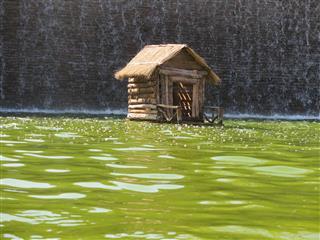 زهرا شعبانی, خانه روی آب