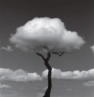 زهرا شعبانی, فضای ابری